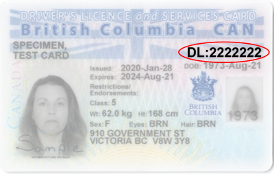 drivers licence number